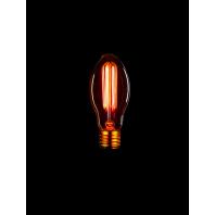 Ретро лампа накаливания Эдисона «Vintage» E75 F2 40W
