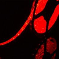 Герметичная светодиодная лента красного свечения 3528 300 LED, IP 65, 4,8 Вт/м, 12V