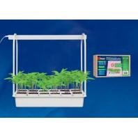 Светильник для растений светодиодный с подставкой. ULT-P34-10W/SPLE IP40 WHITE 12 Набор «Минисад», светильник для растений светодиодный с подставкой. Спектр для фотосинтеза. 12 кашпо в/к, белые. TM Uniel
