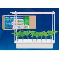 Светильник для растений светодиодный с подставкой. ULT-P44D-10W/SPLE IP20 AQUA SIMPLE WHITE Набор для гидропоники Минисад AQUA SIMPLE Спектр для фотосинтеза. Белый. TM Uniel.