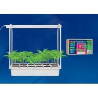 Набор «Минисад», светильник для растений светодиодный с подставкой. Спектр для рассады и цветения. 12 кашпо в/к, белые. TM Uniel. ULT-P34-10W/SPSB IP40 WHITE 12