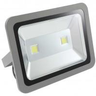 Прожектор светодиодный низковольтный 100Вт (12V-24V) FLU100C Холодный белый
